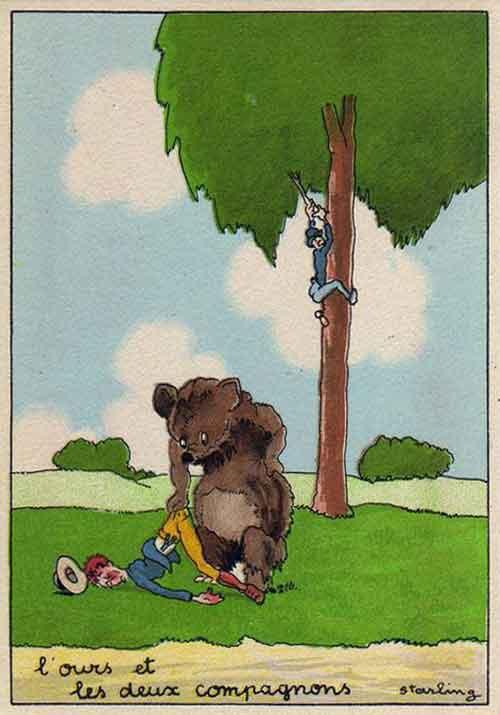 Illustration L'Ours et les deux Compagnons, Starling
