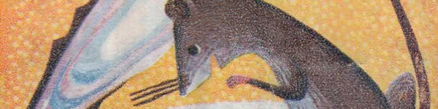 Illustration le rat et l'huître
