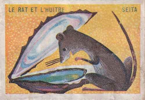 Illustration Le Rat et l'Huître, étiquette boite d'allumettes